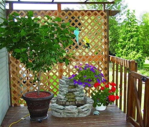 Mẹo nhỏ để sân vườn riêng tư và tươi mát